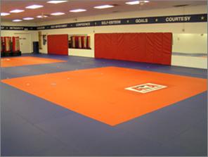 Martial Arts Flooring Applications