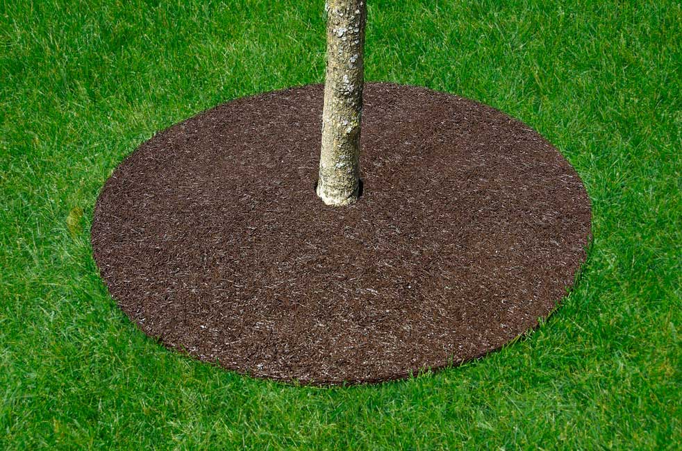 Rubber Mulch Tree Ring